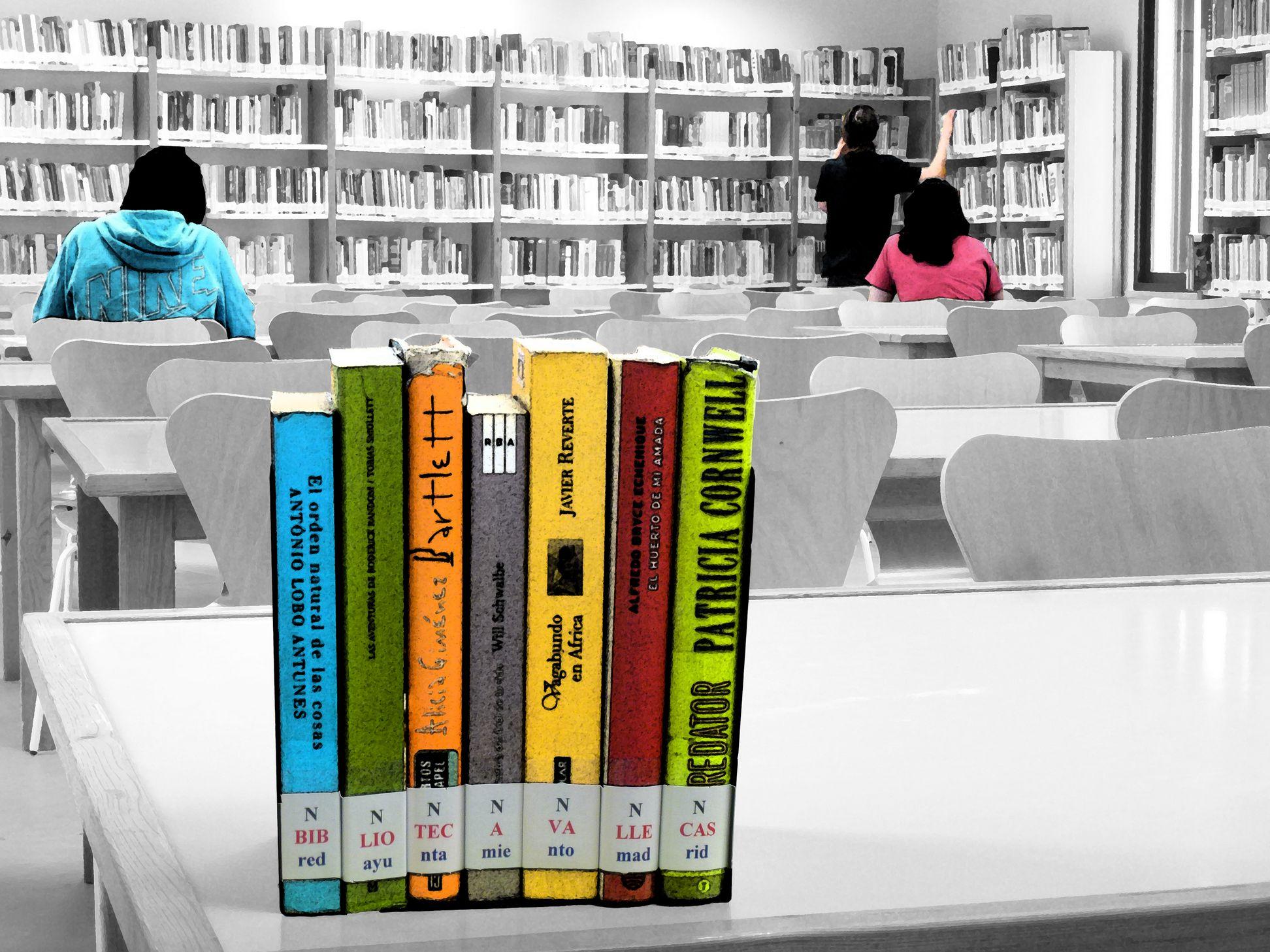 Biblioteca Vallecas